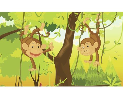Fototapete 1271 P8 Papier Dschungel Affen 368 x 254 cm