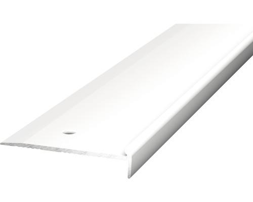 Treppenkantenprofil 48x10 für PVC silber 2,5x10x2500 cm