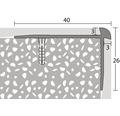 Treppenkantenprofil Alu für PVC silber 3x24x2500 mm