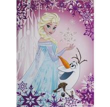 Leinwandbild Frozen Die Eiskönigin Elsa & Olaf 50x70 cm