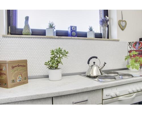 Keramikmosaik weiß Knopf Wand Boden Fliesenspiegel Bad 1 Matte ES-41190/_b