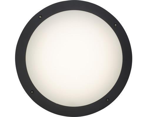 LED Außenwandleuchte 1x12W 1000 lm 4000 K neutralweiß Ø 310 mm Medway anthrazit