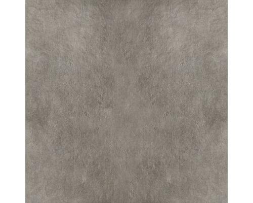 Feinsteinzeug Wand- und Bodenfliese Poseidone Taupe 05 60 x 60 cm