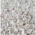 Teppichboden Shag Bravour sand 400 cm breit (Meterware)